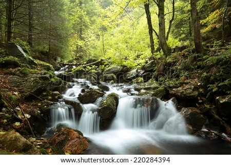 Forest stream in the valley flowing from the mountains. - stock photo