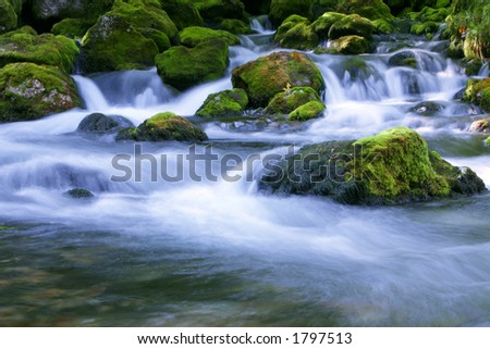 Forest stream running over mossy rocks - stock photo