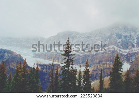 Forest trees and snowy mountains in the distant haze. - stock photo
