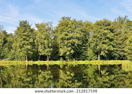 Forest trees reflecting in river water in sunny summer day - stock photo