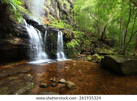 Forest waterfall - stock photo