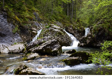 forest waterfall and rocks covered with moss