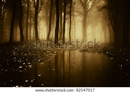 forest with pond in autumn - stock photo