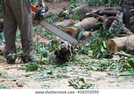 forest worker cutting the trunk in the forest with chainsaw - stock photo