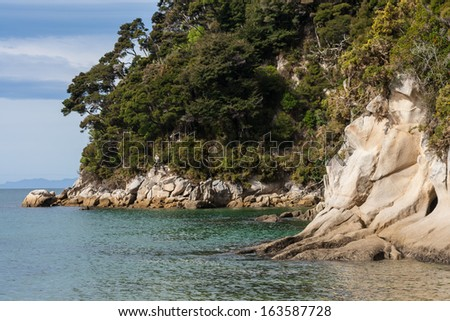 forested cliffs in Tonga Bay, Abel Tasman National Park - stock photo
