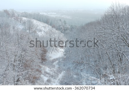 forested hills overlooking mississippi river valley and distant horizons of winter landscape at pine bend bluffs scientific and natural area in inver grove heights minnesota  - stock photo