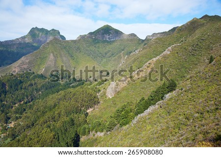 Forested slopes of Robinson Crusoe Island, one of three main islands making up the Juan Fernandez Islands some 400 miles off the coast of Chile - stock photo