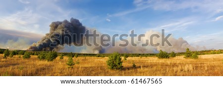 forestfire's smokes - stock photo