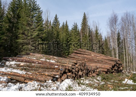 Forestry. Logs stacked in pile after felling - stock photo