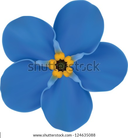 Forget-me not Blue Flower. Raster Version. - stock photo