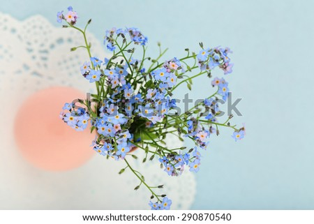 Forget-me-nots flowers on blue background - stock photo