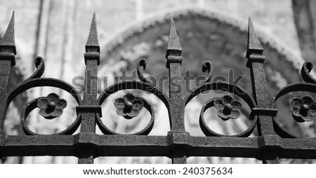 Forging fence of Cathedral in Chartres (France). Selective focus on the flowers. Aged photo. Black and white. - stock photo