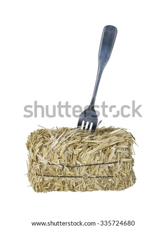 Fork in a bale of hay to represent a dry diet - path included - stock photo