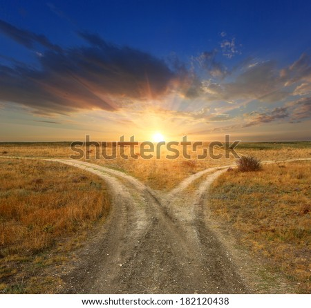 Fork roads in steppe on sunset background - stock photo