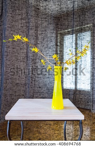 Forsythia branches in yellow vase on the table near black curtain. - stock photo