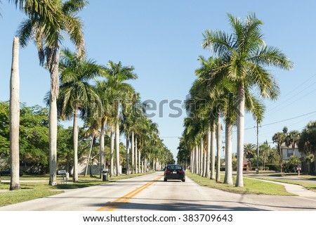 FORT MYERS, USA - DEC 11, 2015: Traffic and palm trees on McGregor Boulevard in Fort Myers, Florida, USA