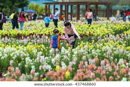 FOSHAN, CHINA - March 27, 2016 : To develop tourism, the government planted thousands of square meters of snapdragons along the river bank, flowers, attracted many people to see every day. - stock photo