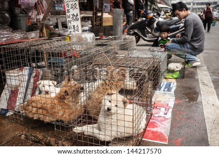 FOSHAN, GUANGDONG/CHINA - MARCH 16: Unidentified customers inspect dogs for sale at a street market in Shunde District of Foshan City, Guangdong Province in Southern China on March 16th, 2013.  - stock photo