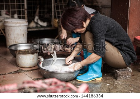 FOSHAN, GUANGDONG/CHINA - MARCH 16: Unidentified street vendor cleans and feathers a duck, Shunde District of Foshan City, Guangdong Province in Southern China on March 16th, 2013.  - stock photo