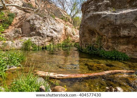 Fossil springs creek in Arizona.
