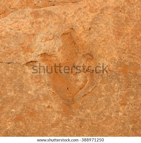 fossilized dinosaur footprint near bluff, utah          - stock photo