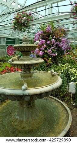 Fountain and Beautiful Flowers in greenhouse  - stock photo