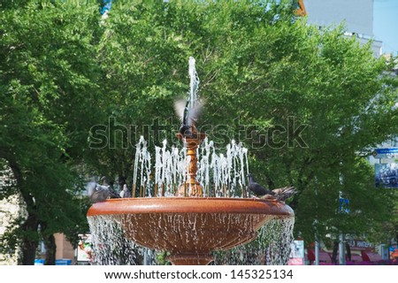 Fountain and pigeons