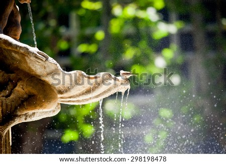 fountain detail with dropping water from it and sitting the sparrow - stock photo
