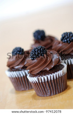 Four chocolate cupcakes with thick chocolate icing and a blackberry on top. - stock photo