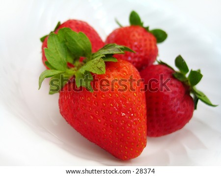Four delicious looking strawberries sitting in a white bowl. Interesting angle, high key, focus on the strawberry in front. - stock photo