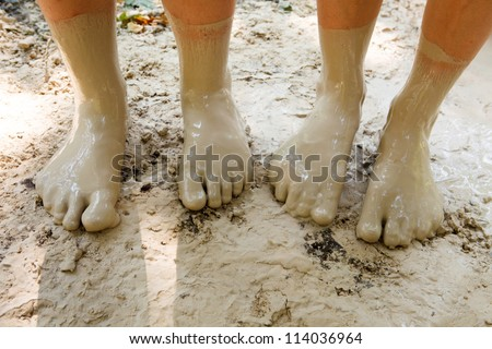 Four feet in mud close-up - stock photo