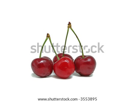 Four fresh cherries with waterdrops against white background