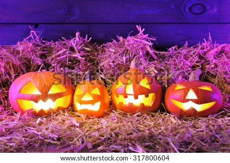 four illuminated halloween pumpkins and straw in front of old weathered wooden board in crazy violet halloween light - stock photo