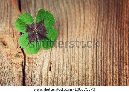 four-leaf clover on wooden board - stock photo