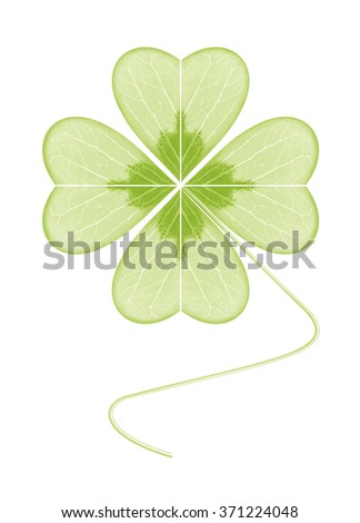 Four-leaf clover. The symbol of wealth, success and love. Happy plant. Geometric leaf green light on a white background.