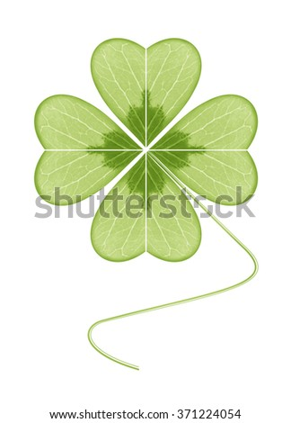 Four-leaf clover. The symbol of wealth, success and love. Happy plant. Geometric leaf green on a white background.