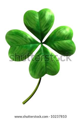 Four leafed shamrock Symbol of luck and Saint Patrick Day holiday Isolated on white background - stock photo