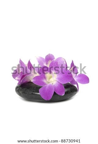 Four pink orchid with stones isolated