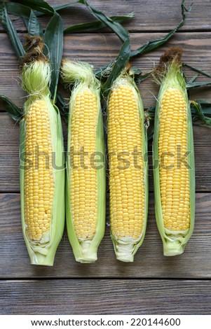 four raw corn cob,  top view - stock photo