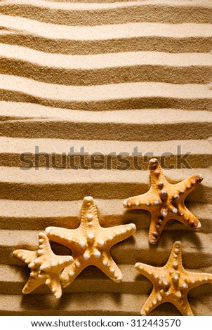 Four sea stars on a striped sandy background. - stock photo