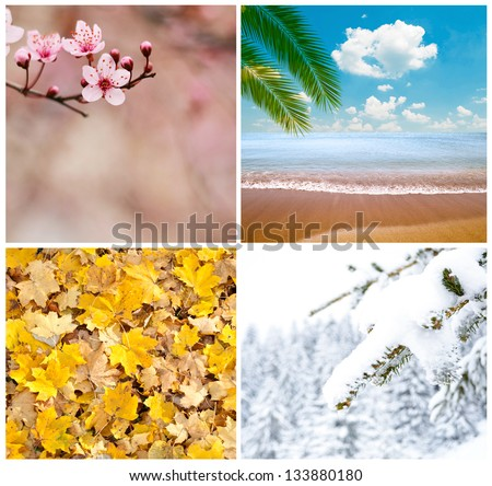 Four season conceptual collage - stock photo