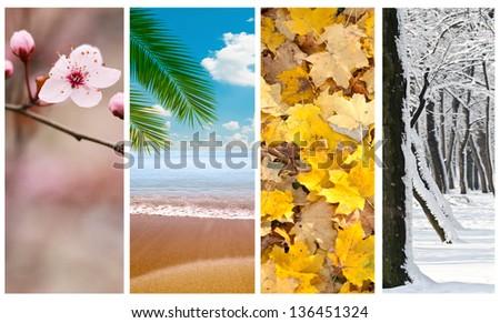 Four seasons collage - stock photo