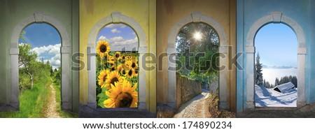 Four seasons collage - bog land, sunflowers, alley, winter wonderland. - stock photo