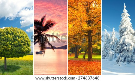 four seasons collage, several images of beautiful natural landscapes at different time of the year - winter spring, summer, autumn, planet earth life cycle concept - stock photo