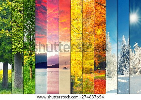 Four seasons collage, several images of beautiful natural landscapes at different time of the year, autumn, winter, spring and summer weather, planet earth life cycle concept - stock photo
