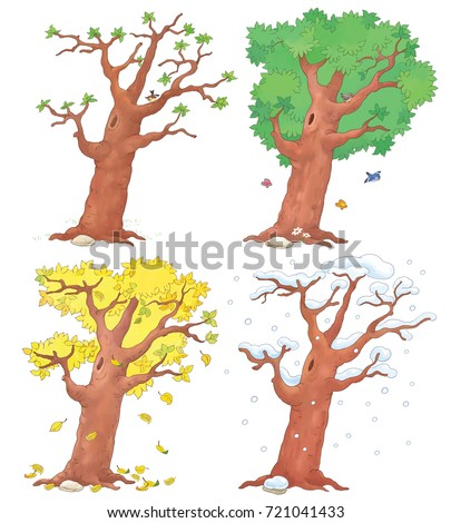 four seasons coloring pages for kids - four seasons tree stock images royalty free images