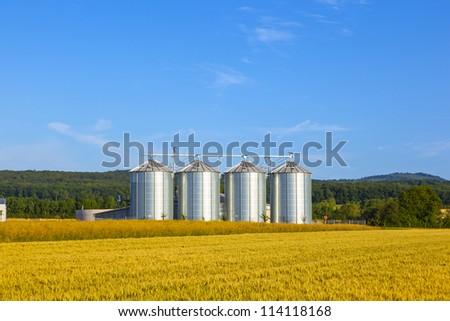 four silver silos in corn field - stock photo
