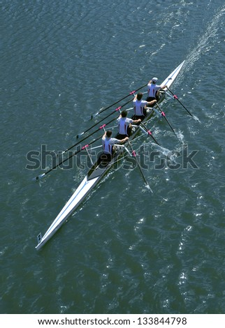 Four sportsmen rowing  on a sunny day.