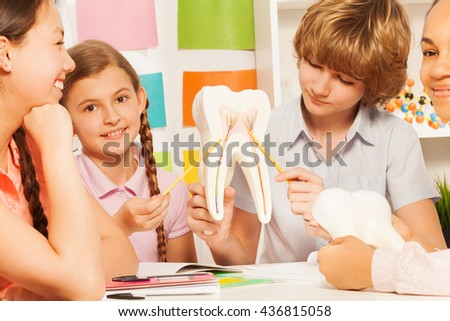 Four teens studying tooth structure at classroom - stock photo
