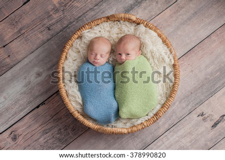 Four week old fraternal, twin baby boys swaddled in light blue and green wraps and lying in a wicker basket. One brother appears to be whispering a secret to the other brother. - stock photo